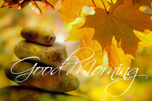 Morning Meditation – now online