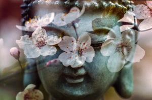 Lunchtime Meditation – now online