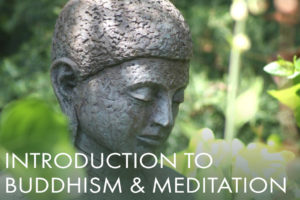 Introduction to Buddhism and Meditation – now online